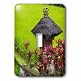 Danita Delimont - Agriculture - Indonesia, Bali. Terraced Subak Rice fields - Light Switch Covers - single toggle switch (lsp_225786_1)