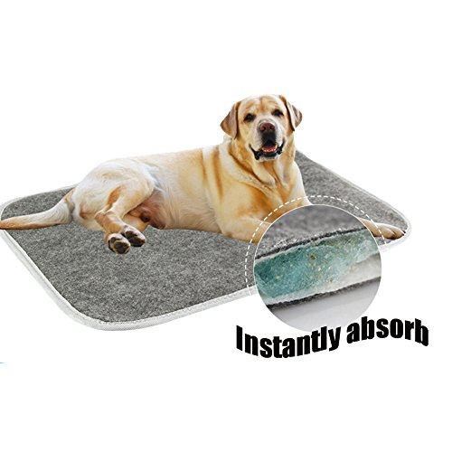 Marian Kennel Mattress Pet Bed Sheet Dog Potty Training Crate for Dogs, Paws Pee Training Pads (Medium)