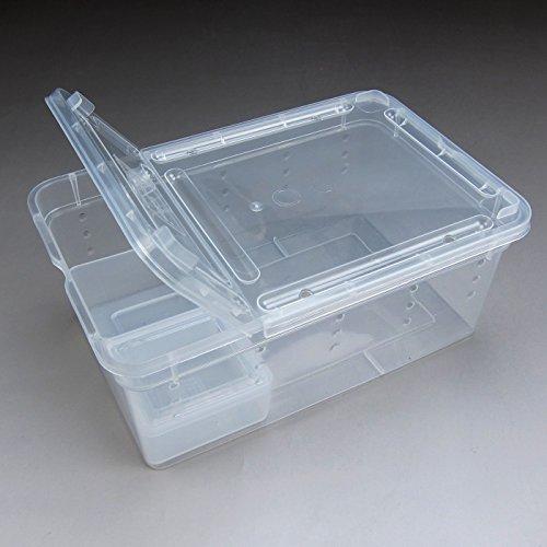 Alfie Pet by Petoga Couture - Cobalt Transport Live Food Feeding Box for Reptile (Cobalt Box)