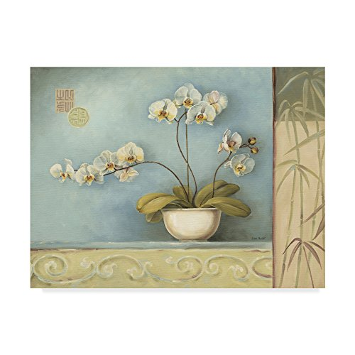 Orchid Spa 1 by Lisa Audit, 18x24-Inch