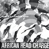 Vision Ofa Psychedelic Africa