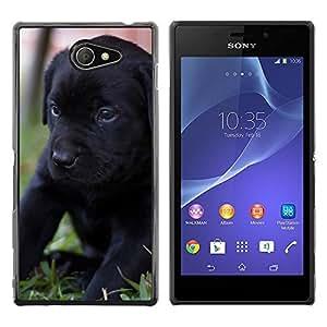 Black Labrador Retriever Puppy Dog - Metal de aluminio y de plástico duro Caja del teléfono - Negro - Sony Xperia M2 / Xperia M2 Aqua / Sony Xperia M2 Dual