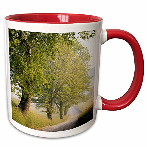 3dRose Danita Delimont - Adam Jones - Roads - USA, Tennessee, Great Smokey Mountains NP, Cades Cove, Hyatt Lane. - 15oz Two-Tone Red Mug (mug_189347_10) - Cades Cove Smokey Mountains