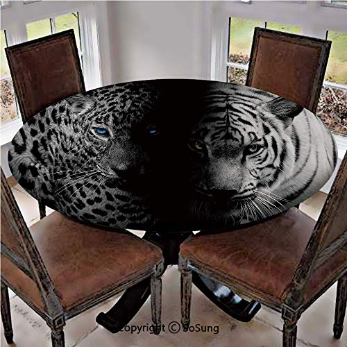SoSung Elastic Edged Polyester Fitted Table Cover,Leopards Blue Eyes Aggressive Powerful Wildcat Profile,Fits up to 36