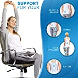 Everlasting Comfort Seat Cushion for Office Chair