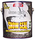 Ames Snow Seal Gallon Roof Coating White