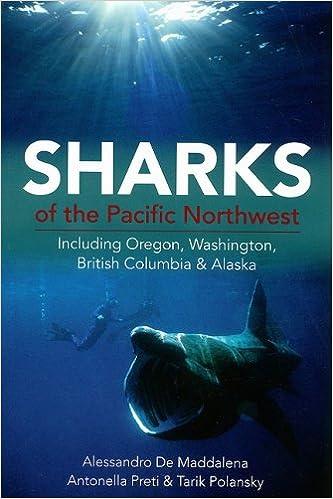SHARKS AND STINGRAYS - BOOKS 51VzZkwmIKL._SX331_BO1,204,203,200_