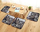 Leighhome Anti-Skid Chair Cushions York City American Metropolitan State Scenery Art Photo Charcoal Grey White and Redwood Health is Convenient W19.5 x L19.5/4PCS Set