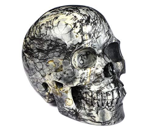 Skullis 5.0