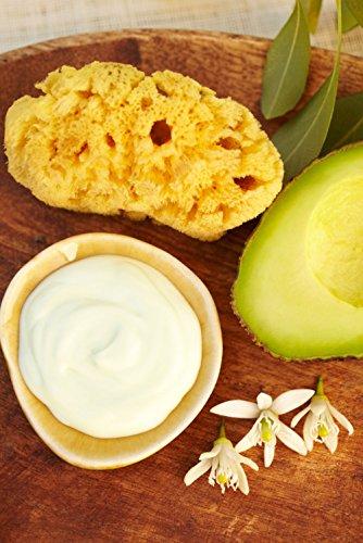 Avocado Butter (33lbs)