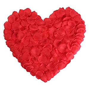 Red Rose Petals Silk Flower Artificial for Romantic Wedding Proposal Decorations 2000PCS(Red) 75
