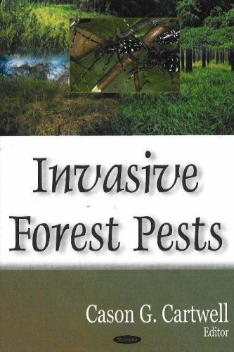 Invasive Forest Pests