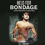 Held for Bondage: James Becomes a Slave Boy | A.J. Moor