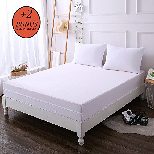 DOWNCOOL Zippered Mattress Encasement - Waterproof Mattress Protector - Box Spring Cover from Bed Bug, Dust Mite - 5 Year Warranty (9-12 deep, Queen) (Zippered Covers Mattress Spring Box)