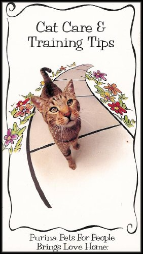 cat-care-and-training-tips-open-your-heart-and-home-to-a-shelter-pet-litter-box-training-cat-proofin