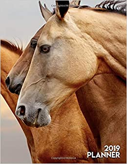 2019 Planner: Pretty Purebred Horses Closeup Daily, Weekly ...