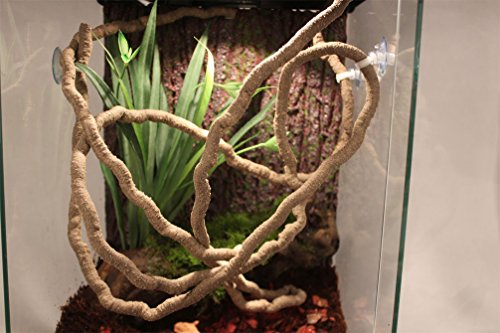 Emours Small Animal Bend-A-Branch Jungle Vine Pet Habitat Decor with Sunction Cups by Emours (Image #4)