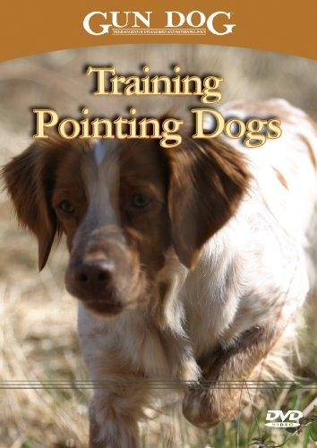 Training Pointing Dogs (Pointing Dog Training Dvd)