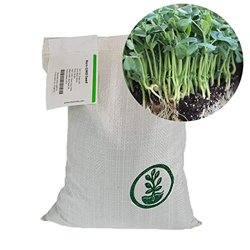 Speckled Pea Sprouting Seeds - 50 Lbs Bulk - Certified Organic, Non-GMO Green Pea Sprout Seeds - Sprouts & Microgreens by Mountain Valley Seed Company (Image #1)