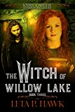 The Witch of Willow Lake (Kyrie Carter:Supernatural Sleuth Book 3)