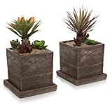 MyGift Textured Cement Planters, Flower Pots with Removable Saucers, Set of 2, Brown
