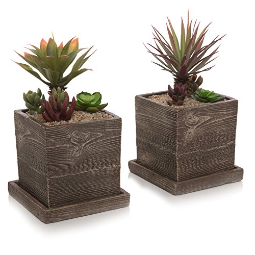 MyGift Textured Cement Planters, Flower Pots with Removable Saucers, Set of 2, Brown (Cement Planter Pot)