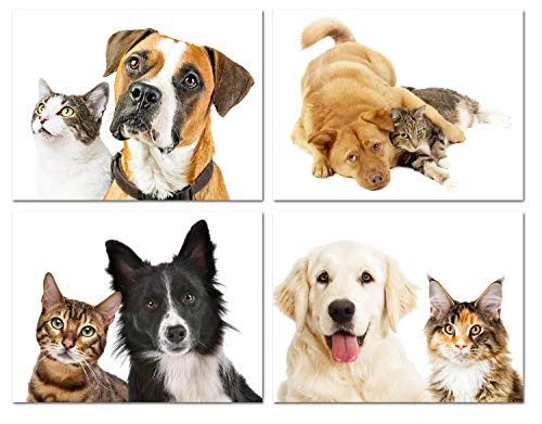 - Furry Friends Cat and Dog Greeting Cards - Blank on the Inside - Includes Cards and Envelopes - 4 Unique Designs - 5.5