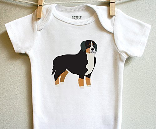 Bernese Mountain Dog Boy Girl Baby Bodysuit One Piece Short Long Sleeve Sizes Newborn 3 6 9 12 18 24 - Mountain Shower Square