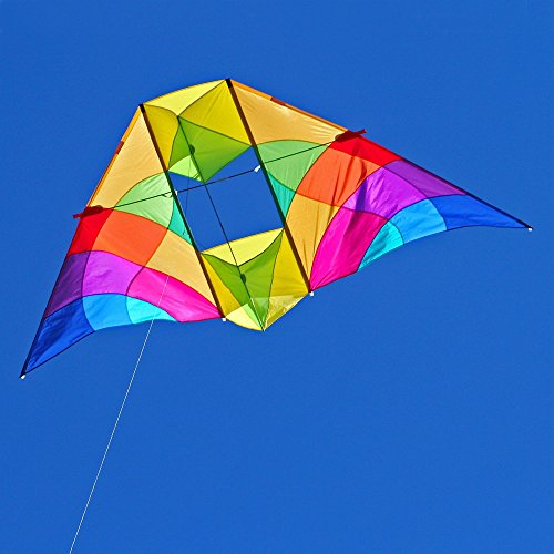 Into The Wind Alpine Delta Conyne Kite by Into The Wind