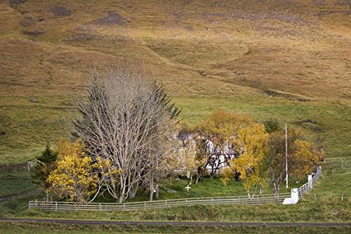 Small cemetary at a farmhouse. Langidalur, Northwest Iceland. 30x40 photo reprint by PickYourImage