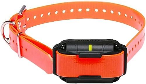 Dogtra Home Pet Remote Trainer SureStim H Plus 1 2 Mile Extra Collar Orange