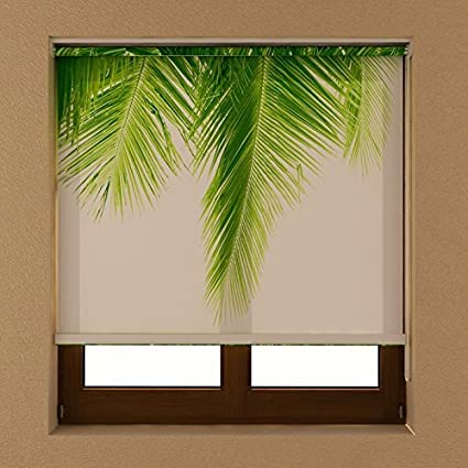 Room Darkening Light Filtering Rollup Roll Down Roller Shades