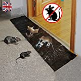 Specifications:       ◐Color:Black       ◐Shelf life:3 years       ◐Pest Type:Mice,fleas,rodent       ◐Size:120*28cm/47*11''       ◐Length:1.2m               Package included:       1 x Mouse Rodent Glue Traps Board               ...