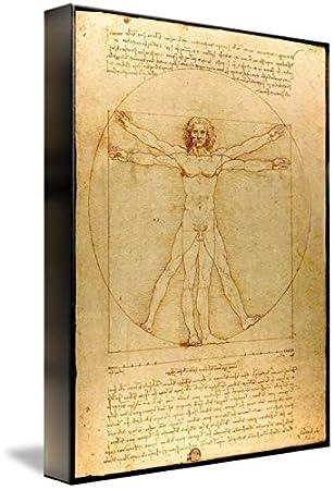 Amazon.com: Wall Art Print entitled Leonardo Da Vinci - Vitruve Luc ...