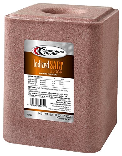 Iodized Salt Block 50lb by Manufacturers Direct