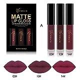 TR.OD 3PCS Lip Gloss Set Matte Waterproof Professional Hot Fashion Lip Gloss Liquid Lipsticks Set Party Gift Kit A