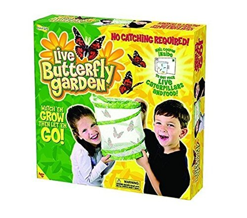 Insect Lore BUTTERFLY GARDEN (Set of 3)