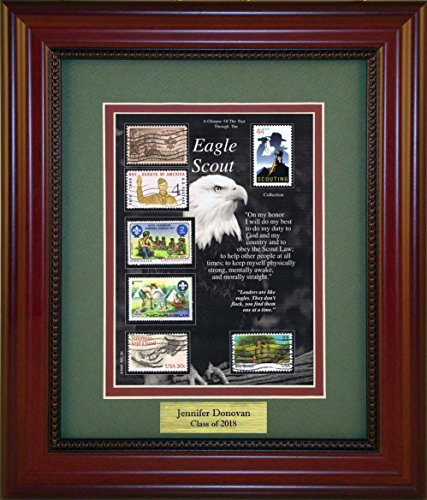 (Eagle Scout - Unique Framed Collectible (A Great Gift Idea) with Personalized Engraved Plate)