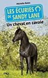 7. Les écuries de Sandy Lane : Un cheval en cavale