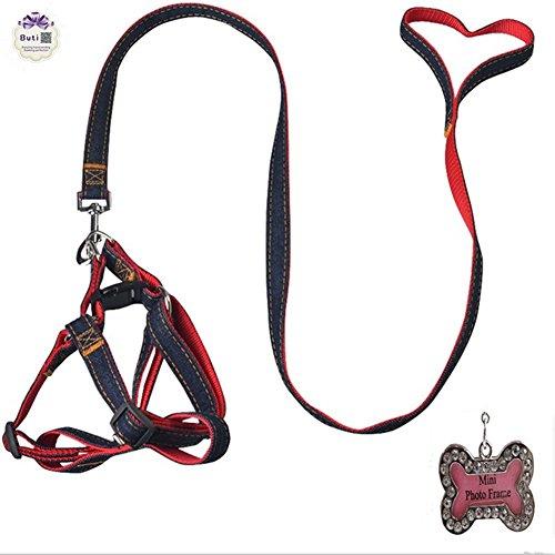 Buti-No-Pull-Dog-Leash-Harness-Adjustable-Leash-Collar-for-Extra-LargeLargeMediumSmallExtra-Small-Dogs