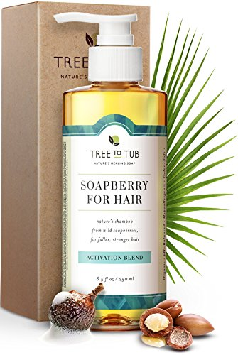Gentle, Hair Growth Shampoo by Tree To Tub - Biotin Caffeine Hair Regrowth Shampoo for Thinning Hair and Hair Loss with Wild Soapberries, Organic Argan Oil, Pumpkin Seed Oil, for Women and Men 8.5 oz (Best Ph Balanced Shampoo And Conditioner)