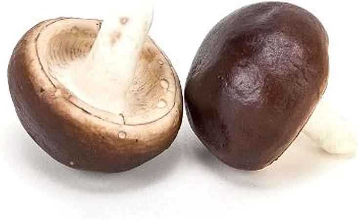 PU foam Brown//Beige 24 x Decorative Mushrooms in 2 Sizes artificially!!!