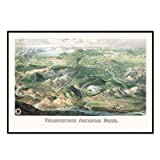 Yellowstone National Park 1904 Historical Print Mounted Framed Wall Map Frame Color: Black