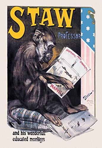 ArtParisienne Professor Staw and His Wonderful Educated Monkeys 20x30-inch Canvas Print