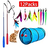M JJYPET Retractable Cat Toy Wand,12 Packs Interactive Cat Feather Toys,9 Assorted Teaser Refills...