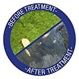 Laguna Phos-X Phosphate Remover, Water Treatment