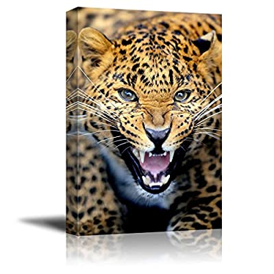 Angry Leopard Wild Animal Beast Photograph Wall Decor...
