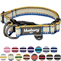 Blueberry Pet 15 Colors 3m Reflective Multi Colored Stripe Adjustable Dog Collar Ginger And Blue Large Neck 18 26