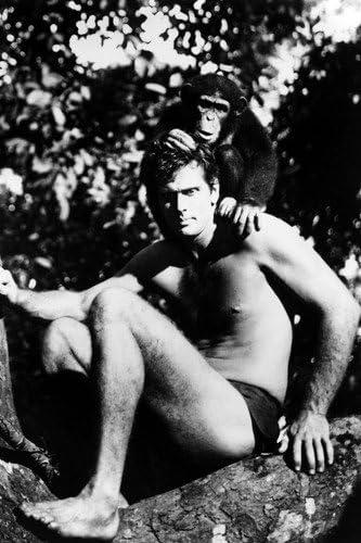 Ron Ely en Tarzán Retrato de longitud completa sentado en ...