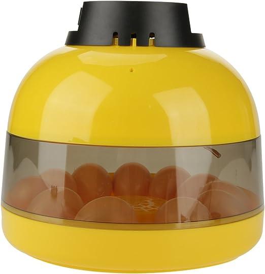 GOTOTOP 10 Huevos de Gallina Mini Incubadora Digital LED Aves de Corral Temperatura del Ventilador: Amazon.es: Productos para mascotas
